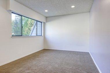Pale purple contrast wall in empty room