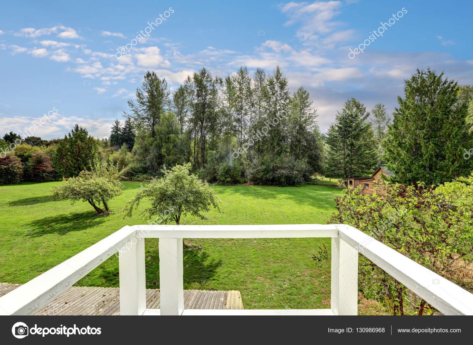 Hinterhof Ansicht Mit Viel Grün Aus Dem Haus Balkon. Schöne Landschaft.  Nordwesten, Usa U2014 Foto Von Iriana88w
