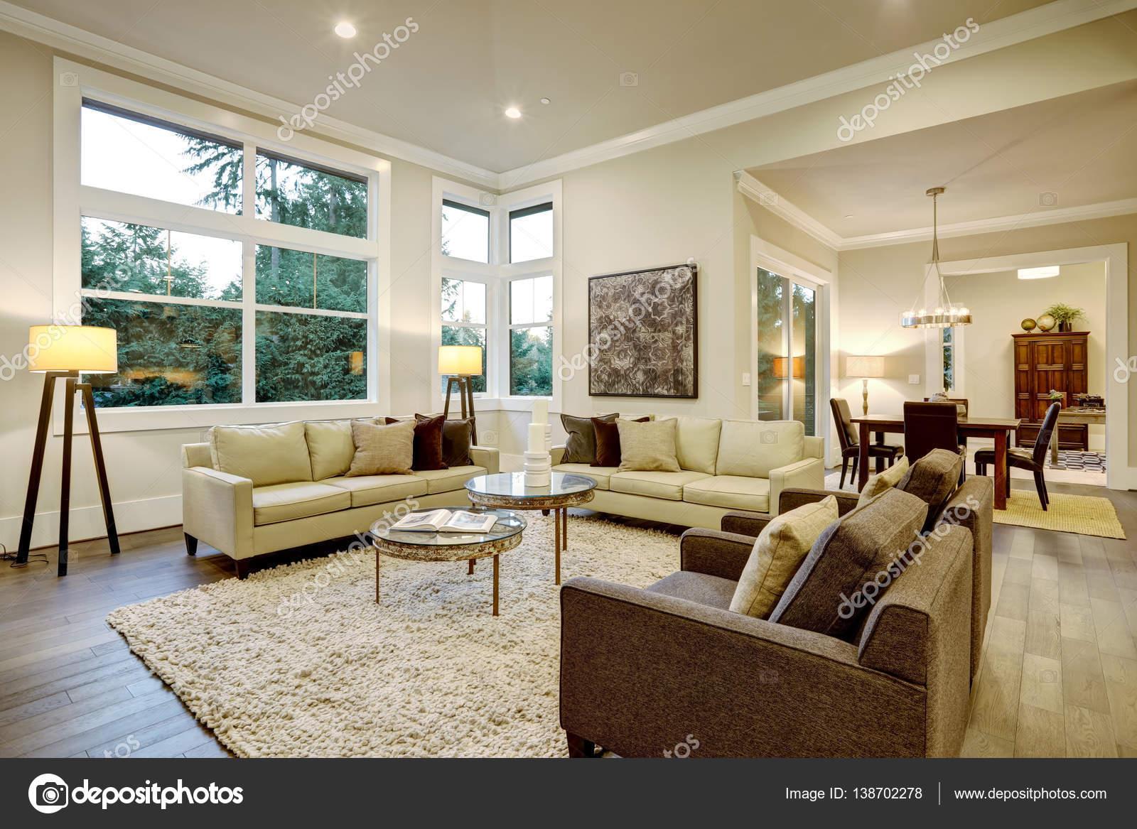 Design chic salon lumineux avec plancher foncé ...