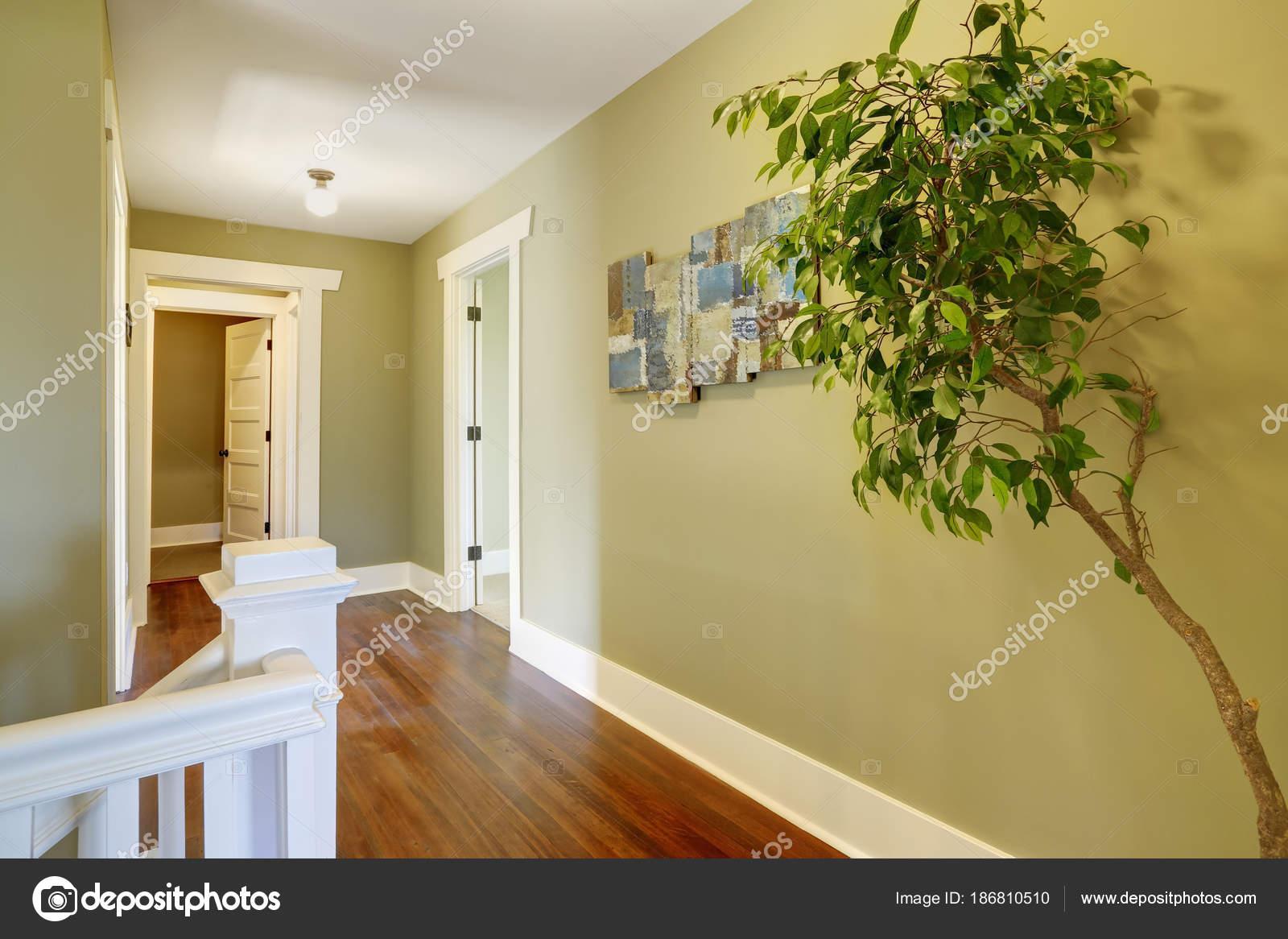 Interior de pasillo con paredes verdes — Foto de stock © iriana88w ...