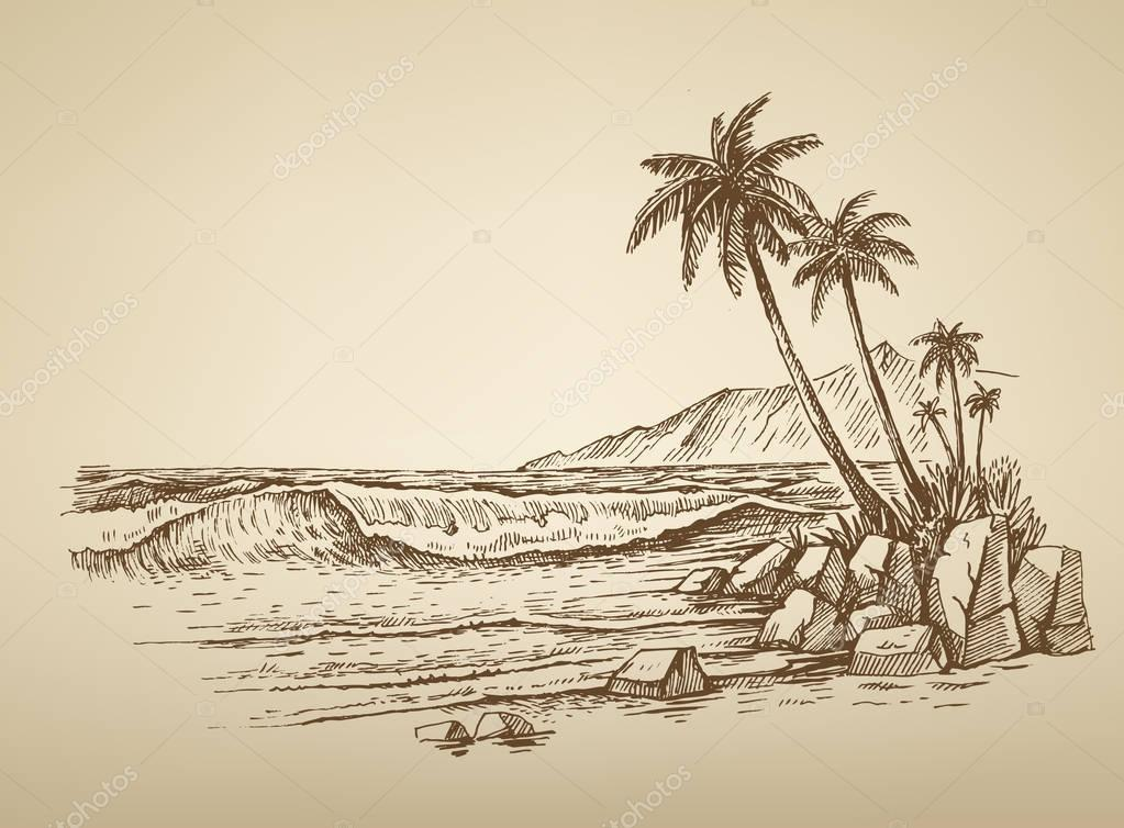 beach with palm trees illustration