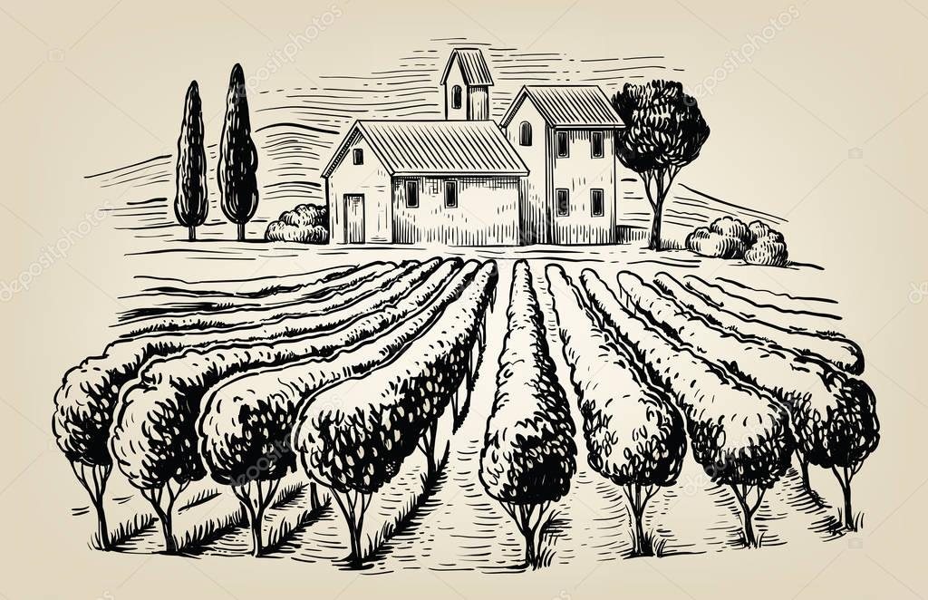 vector village and landscape