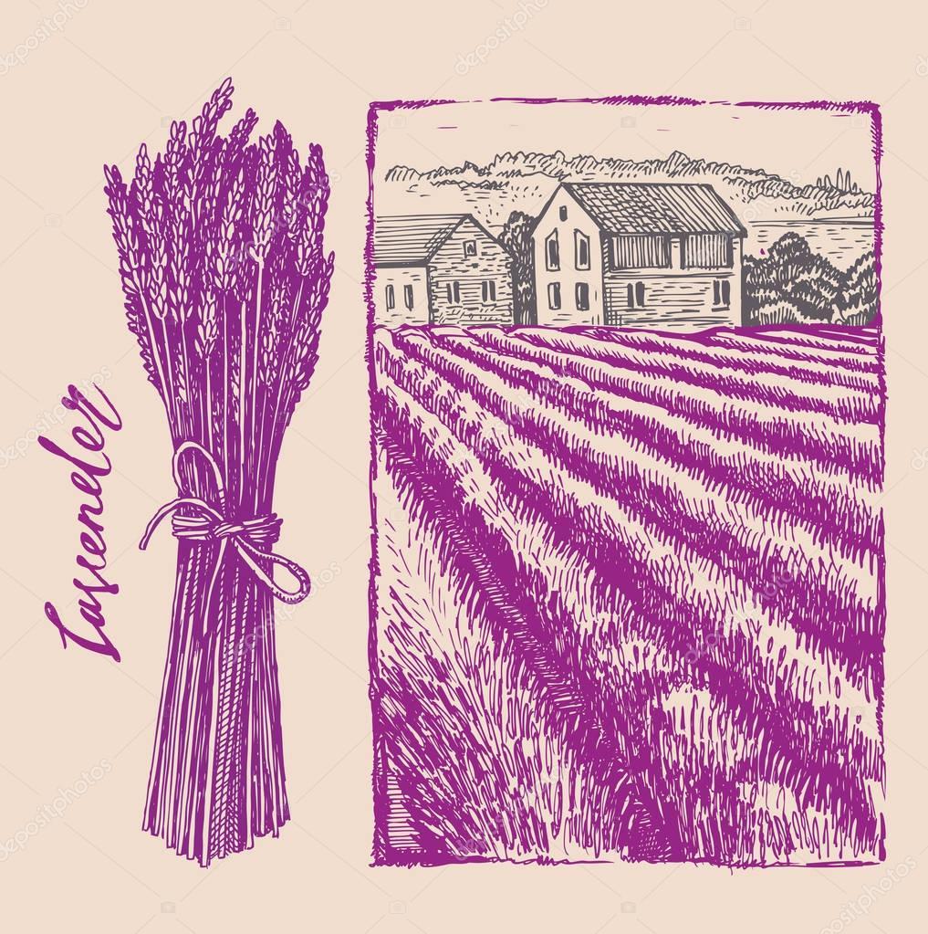 lavender bouquet with landscape