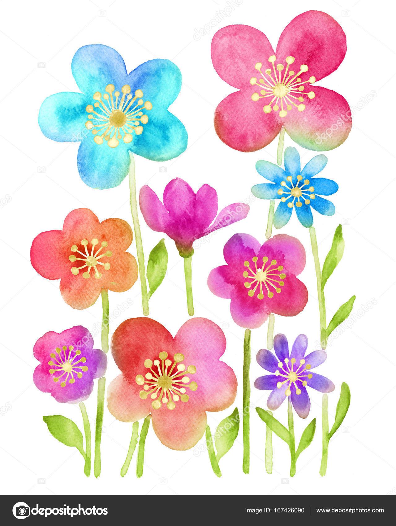 Fleur Illustration fleur illustration aquarelle — photographie tanginuk1205 © #167426090