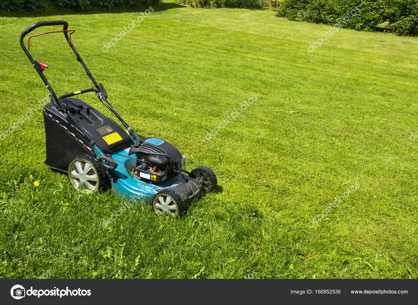 Mahen Von Rasen Rasenmaher Auf Grunen Rasenmaher Rasen Mahen Gartner