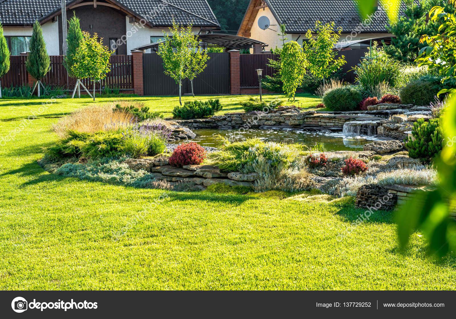 Dise o del paisaje patio trasero hermoso vista de rboles - Arboles decorativos ...