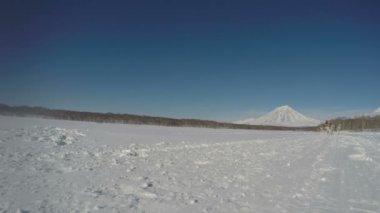 Kamchatka Traditional Extreme Sled Dog Racing Beringia