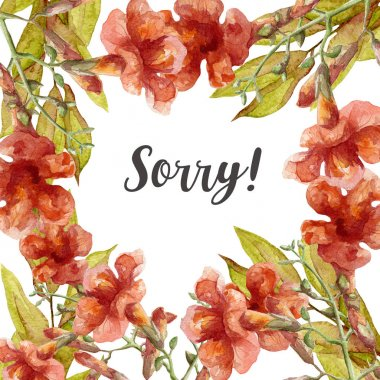 sorry card with watercolor flowers