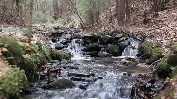 Horský lesní potok tekoucí v podzimní sezóně se dvěma malé vodopády