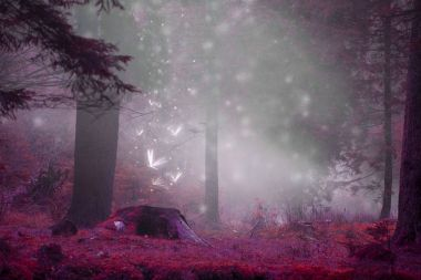 Dreamy fairytale forest scene with magic fireflies, foggy surrea