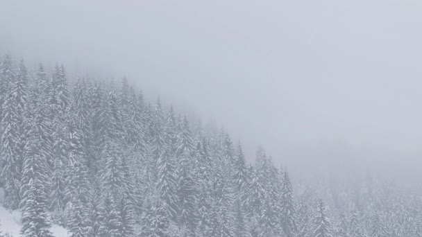 Schneefall, Winterlandschaft mit verschneiten Bäumen und Schnee