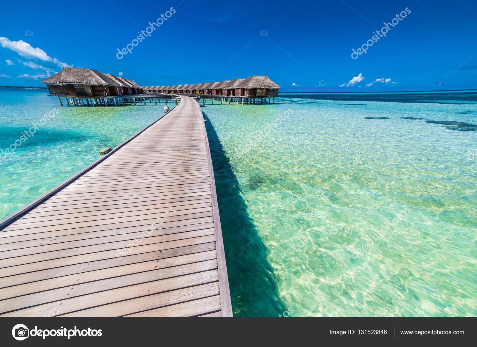 Sopra i bungalow dell\'acqua su un isola tropicale con palme e ...