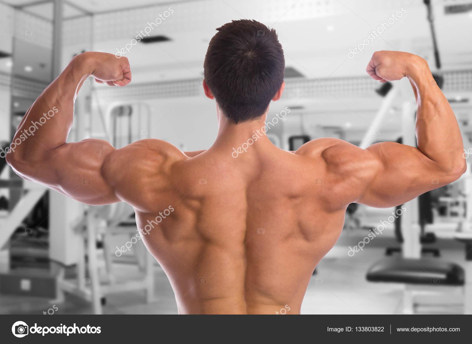 Bodybuilder Bodybuilding Muskeln Fitnessstudio Rücken Bizeps posiert ...