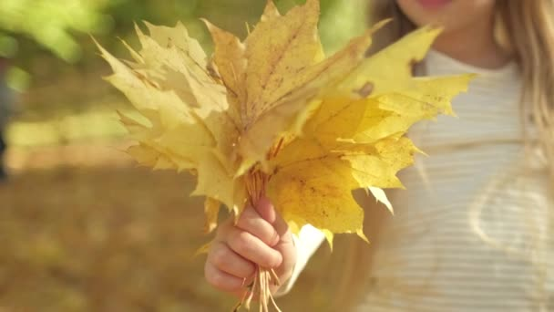 little girl giving bunch of yellow leaves to camera while resting on sunny autumn day in park