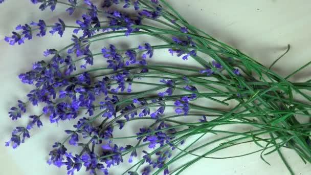 Lavendelkräuterbüschel. Drehscheibe im Uhrzeigersinn