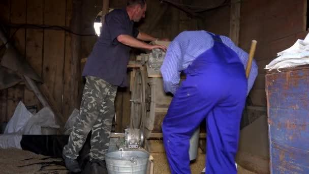 Zwei Männer sieben Getreide mit Oldtimer-Maschine in Bauernscheune