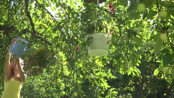 Hezká zahradníka žena s konvy vody květináče zavěsit na ovocný strom v letní zahradě. 4k