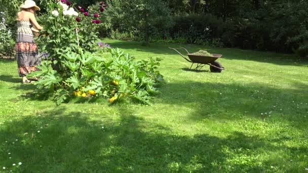 Bauernmädchen in Kleid und Flip-Flop mähen Rasen mit Rasenmäher im Hof. 4k