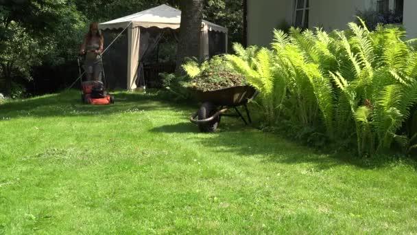 weibliche Gärtner in Shorts und BH schieben Rasenmäher Rasen in der Nähe von Farn. 4k
