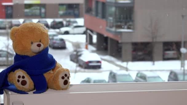 Heizkörper Zum Sitzen plüsch teddybär mit blauen schal auf heizkörper in der nähe der