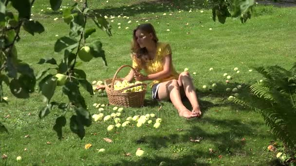 Gardener girl sitting on ground and gathering windfall ripe apples fruits. 4K
