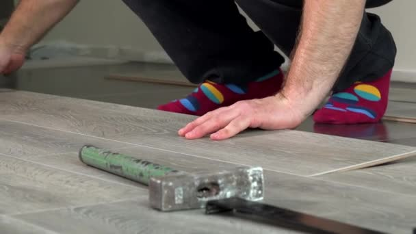 Handyman Hands Laying Down Laminate Wood Flooring Boards Stock