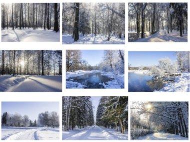 Collage photos of snowy winter park stock vector