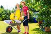 Couple in garden with barrow