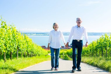 Senior couple having walk in vineyard