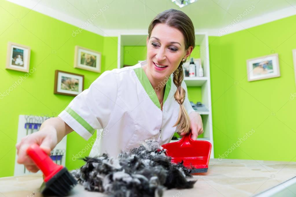 Hair being swept away at dog or pet grooming parlor