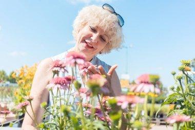 Portrait of a serene senior woman standing in the garden in a su