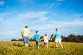 Fotografie Rodina drží ruce projíždí přes louku
