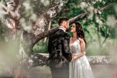 happy bride and groom standing near old big tree.
