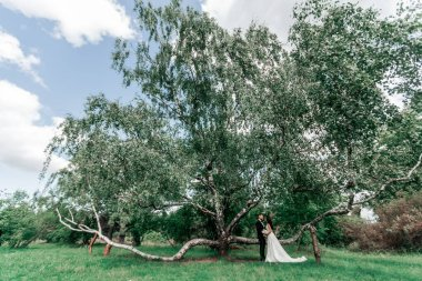 happy bride and groom standing by the crown of a big tree.