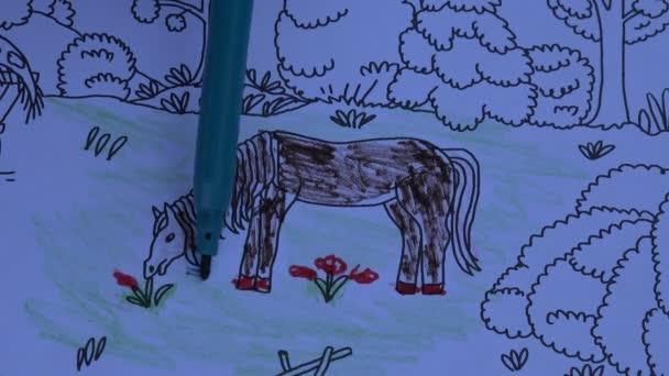 Omalovánky pro děti s koněm, 4k