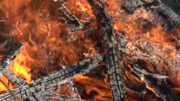 Máglya tűzifa absztrakt háttér