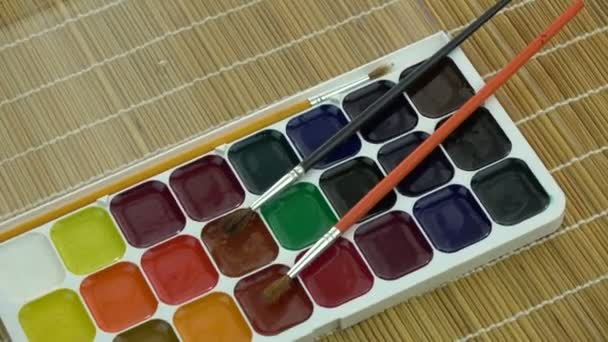 Colorful watercolour aquarells paintbox with brushes rotating