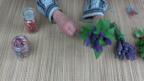 Senior woman herbalist hands binding fresh anise hyssop bunch for dry