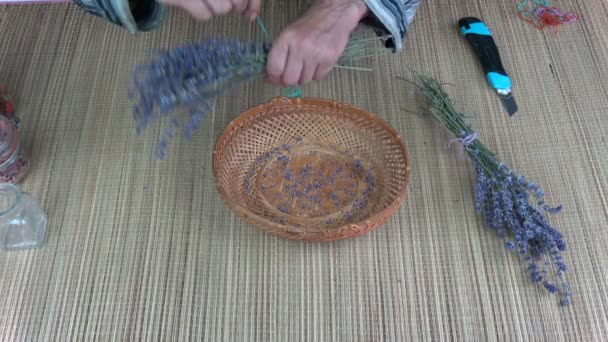Senior woman  hands binding dry lavender bunch on table
