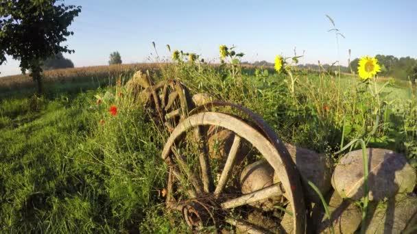 Ranní mlha a dekorativní plot s kameny, kola a květiny, časová prodleva