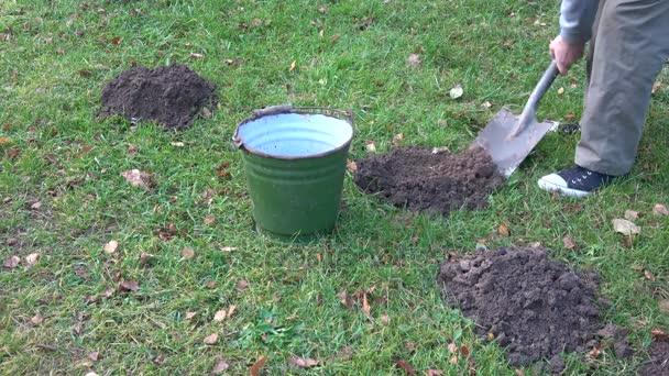 Prächtig Gärtner Mit Schaufel Maulwurf Maulwurfshügel Auf Rasen Mit #NH_19