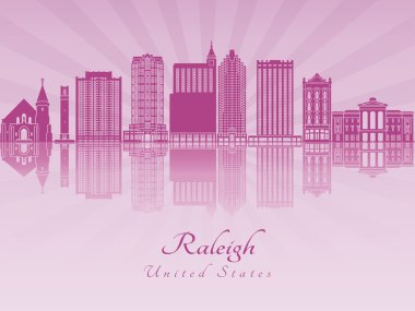 Raleigh V2 skyline in purple radiant orchid