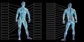 Muž anatomie a svaly textová pole