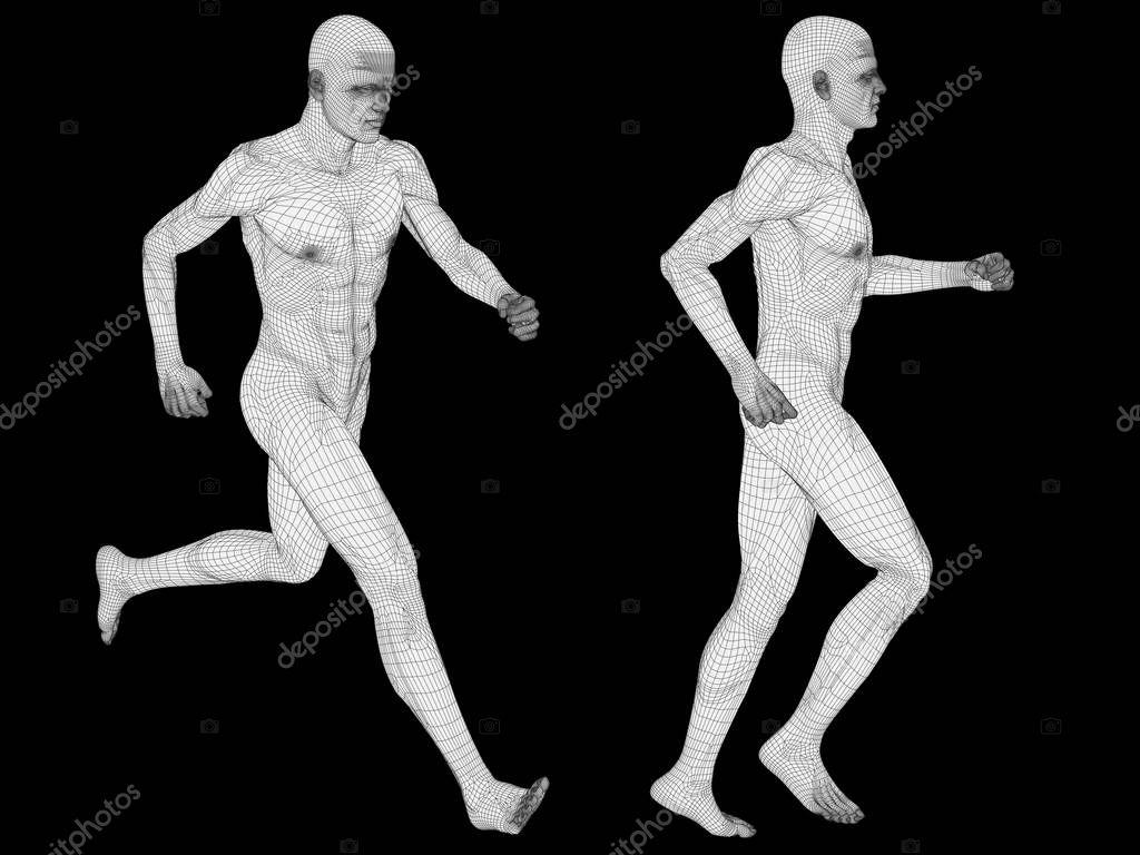 Anatomía de los hombres de alambre blanco — Fotos de Stock ...