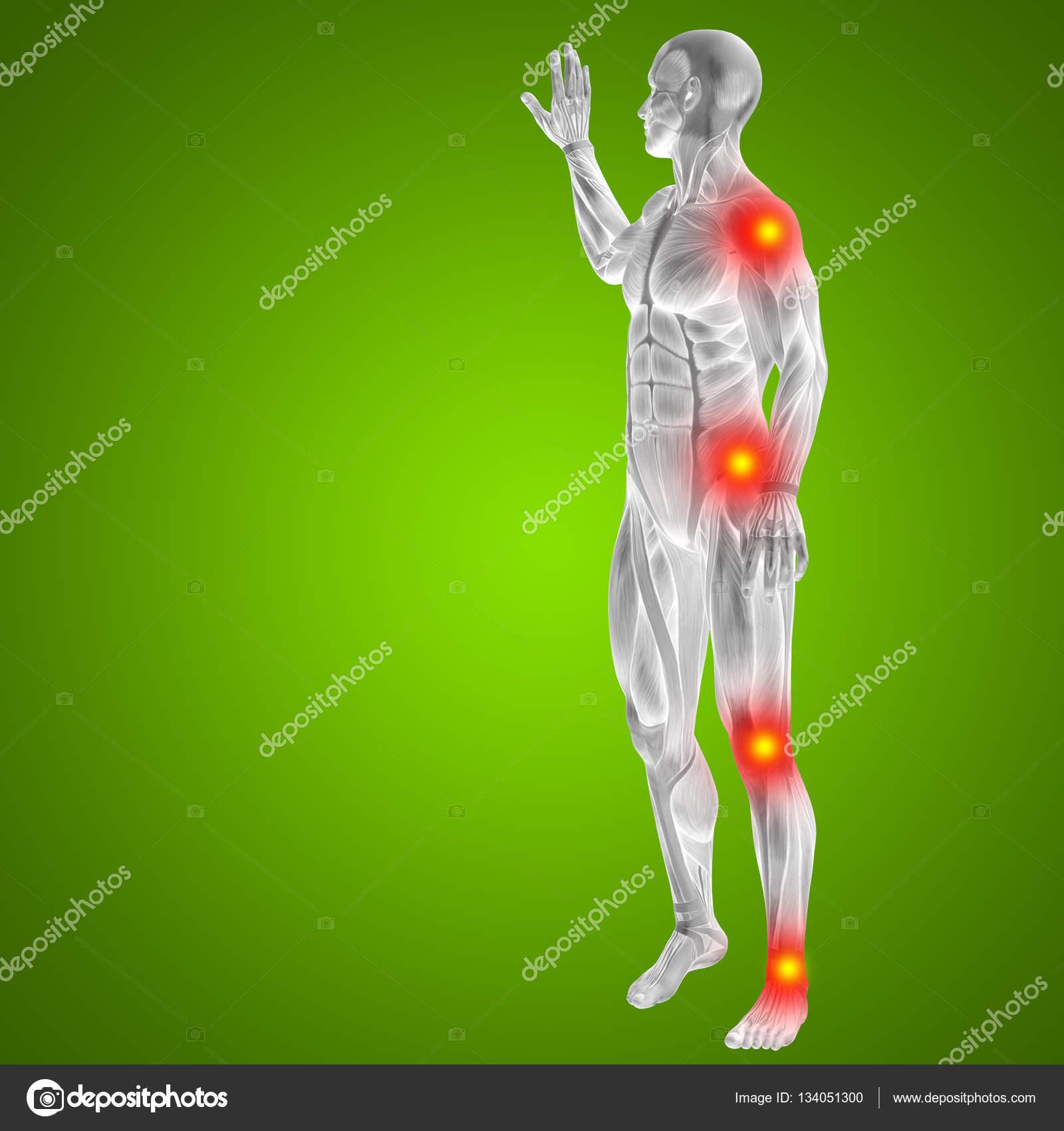 Cuerpo humano con dolor articular — Foto de stock © design36 #134051300