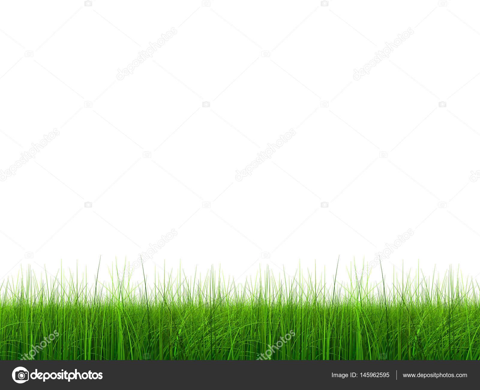 High Resolution Green Fresh And Natural 3d Grass Field Stock Photo C Design36 145962595