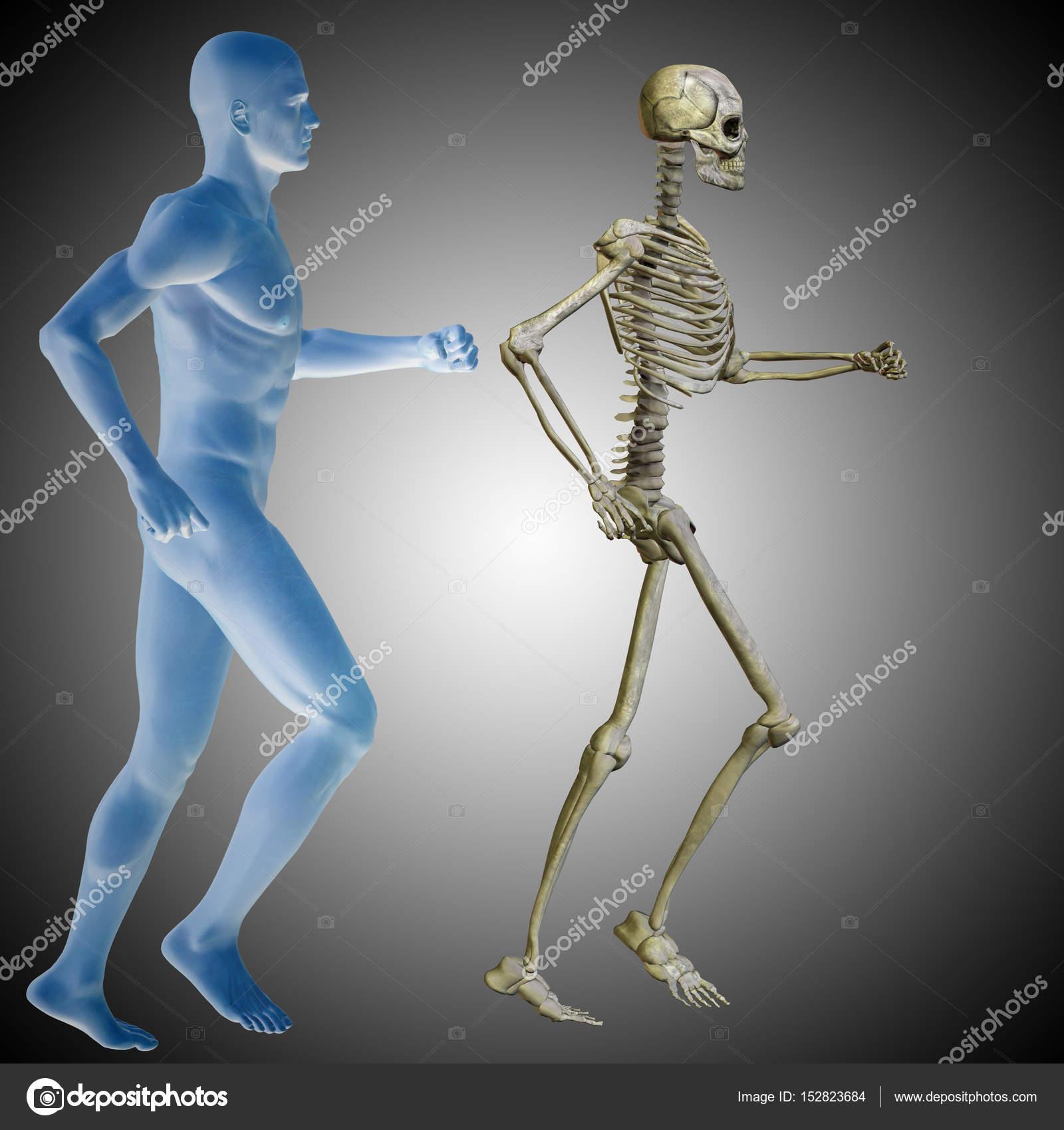 pecho de cuerpo conceptual hombre humano — Fotos de Stock © design36 ...