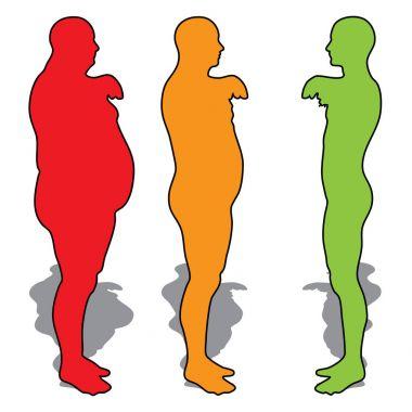 3D illustration fat overweight vs slim