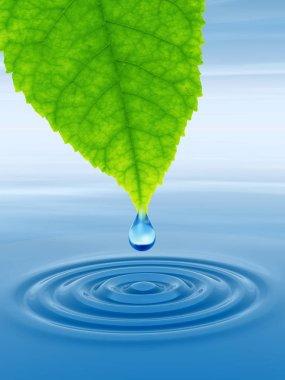 clean spring water or dew drop