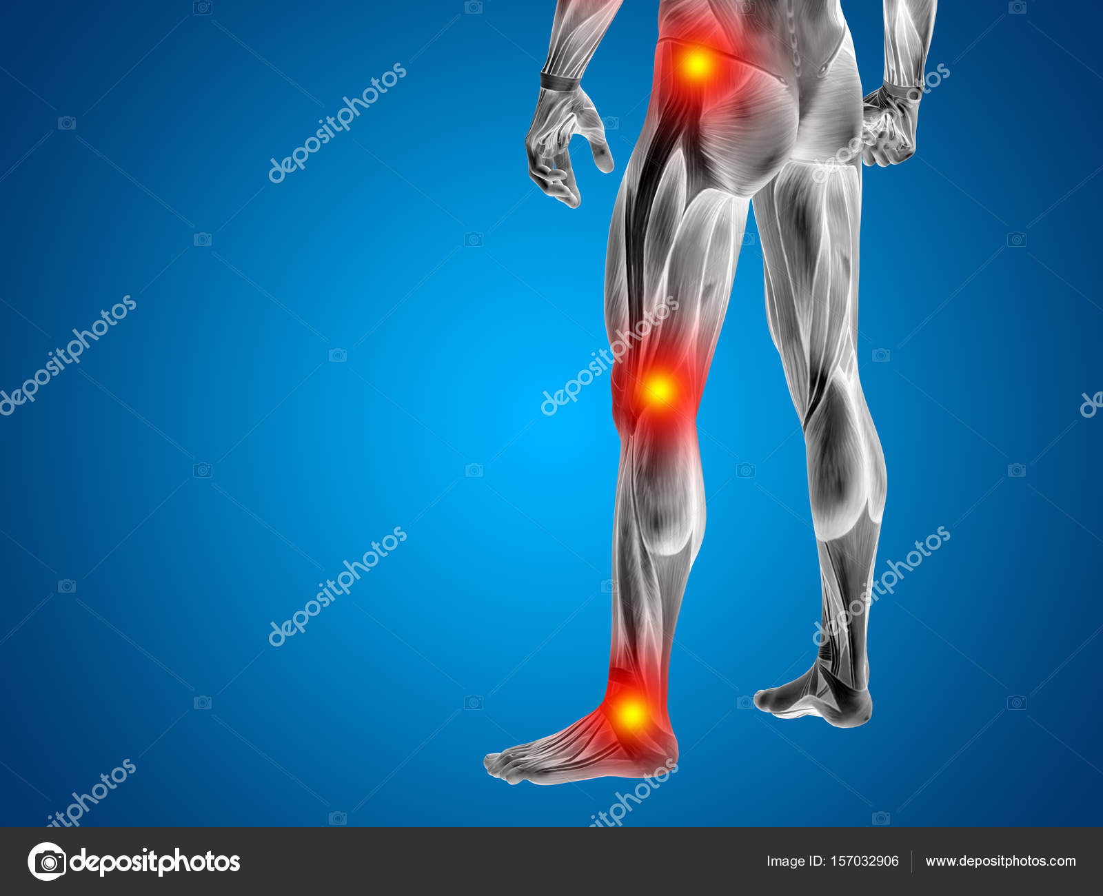 Anatomy Lower Body With Articular Pain Stock Photo Design36